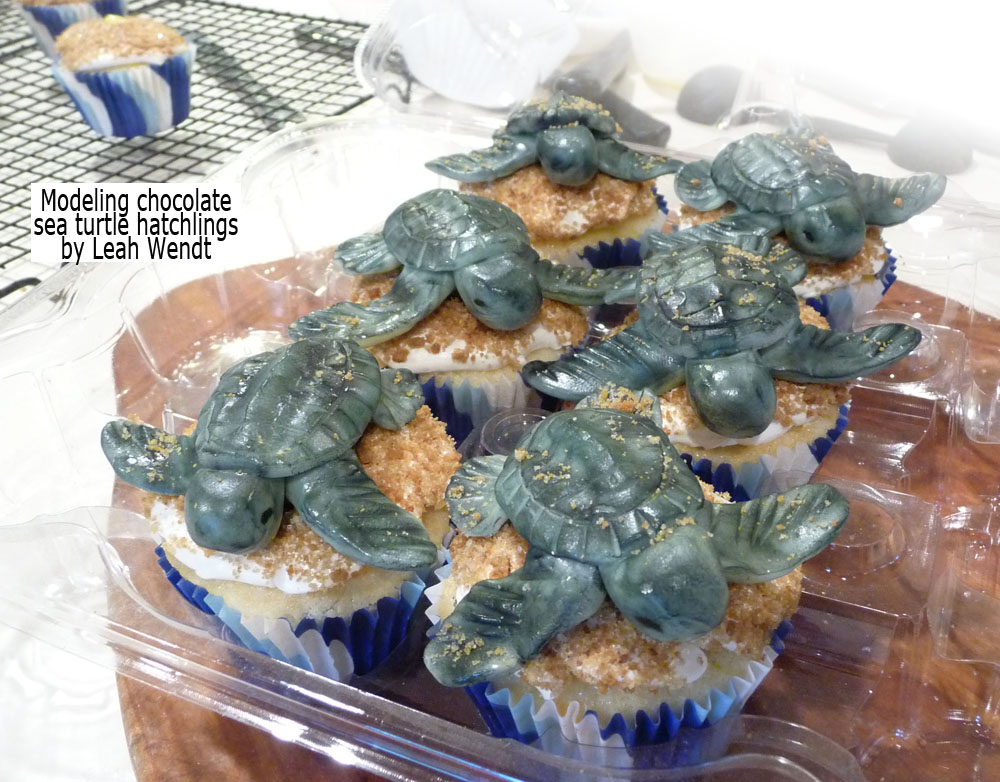 modeling chocolate sea turtle hatchlings on cupcakes